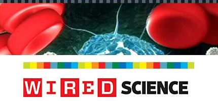 Wired Science on PBS